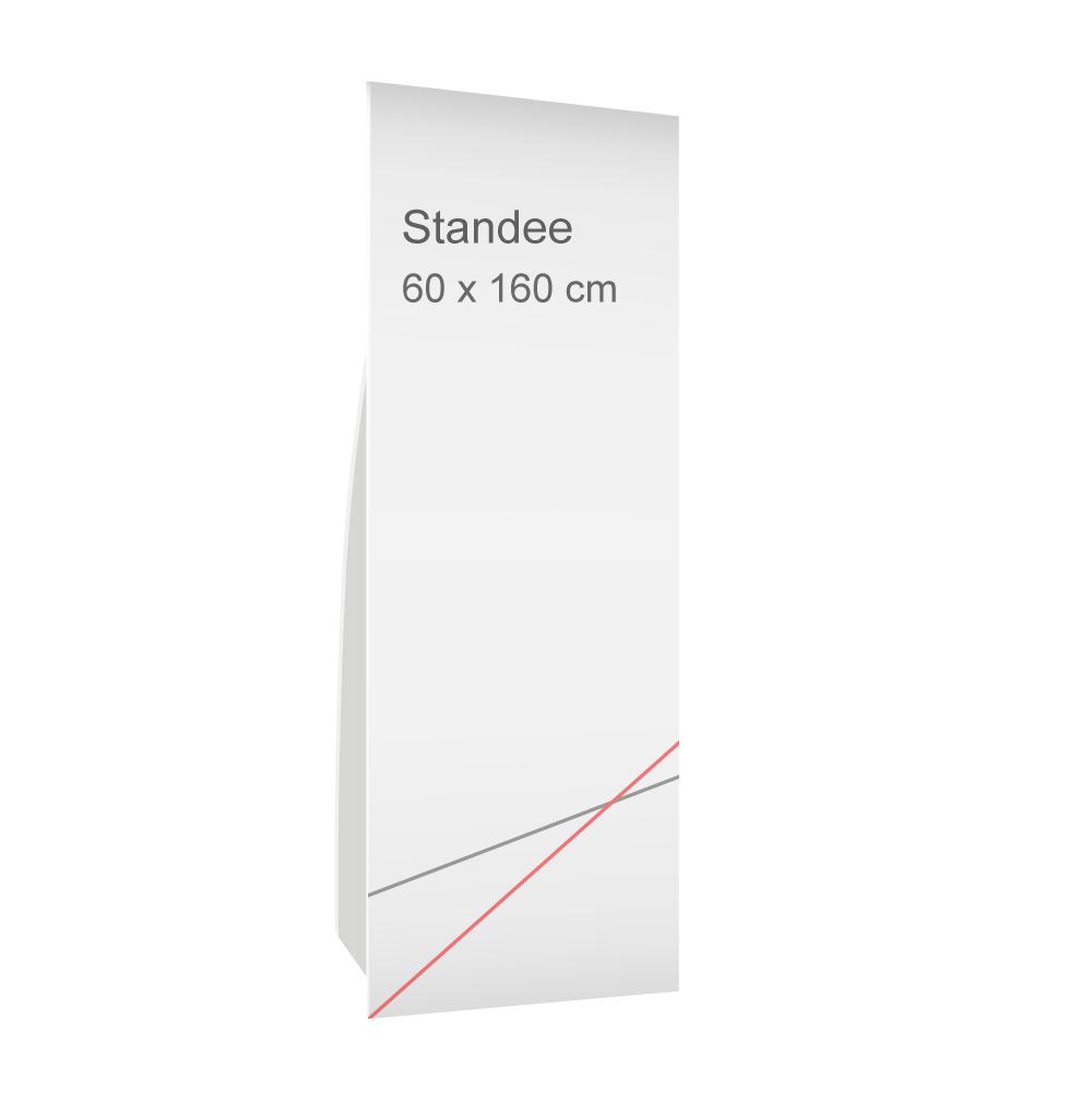 สแตนดี้ขนาด 60x160 cm