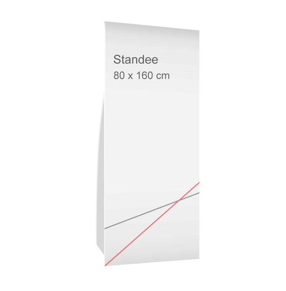 สแตนดี้ขนาด 80x160 cm